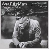 Asaf Avidan – The Study On Falling LP