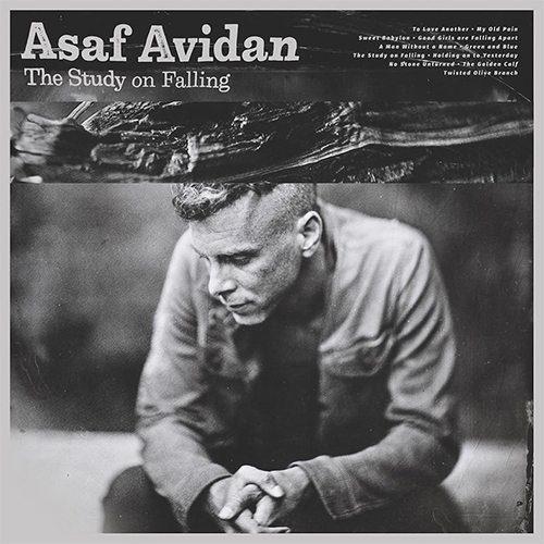 Asaf Avidan ‎– The Study On Falling LP