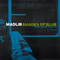 MADLIB SHADES OF BLUE