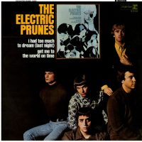 VINYL ELECTRIC PRUNES
