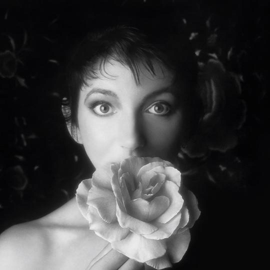 KATE BUSH BOX 2