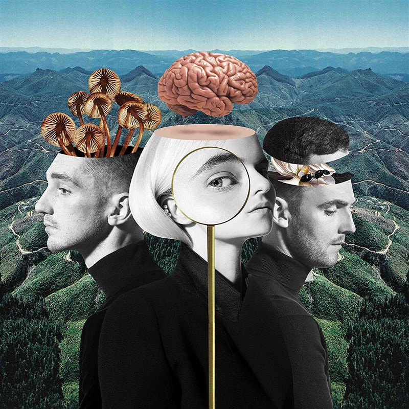 CLEAN BANDIT - WHAT IS LOVE 2LP