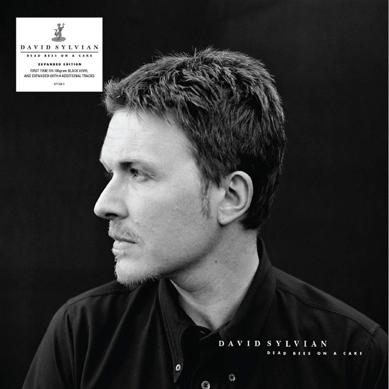 DAVID SYLVIAN - DEAD BEES ON A CAKE 2LP EXPENDED EDITION