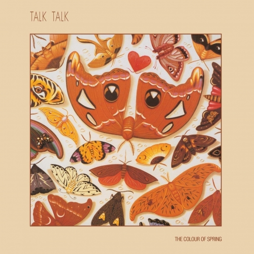 TALK TALK COLOUR