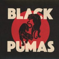 BLACK PUMAS VINYL