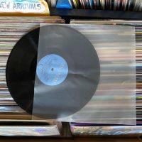 ניילונים פנימיים לתקליטים
