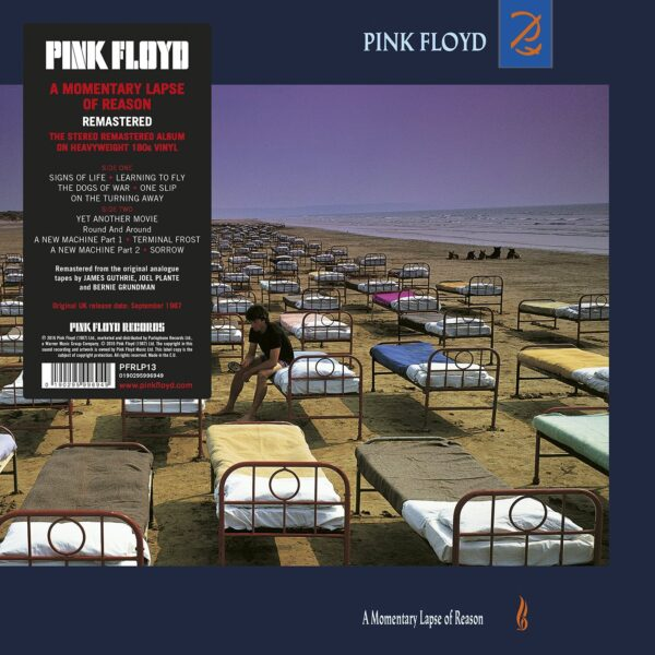 PINK FLOYD MOMENTARY