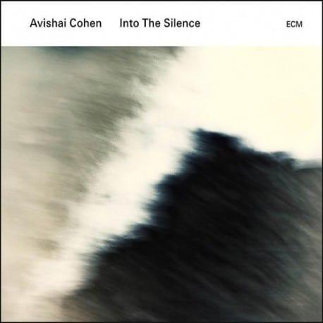 Avishai Cohen - Into The Silence