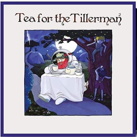 Cat Stevens - Tea For The Tillerman 2
